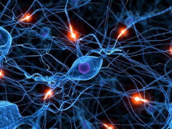 ¿En qué te beneficia la Memoria Rápida?
