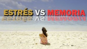 Estrés vs memoria